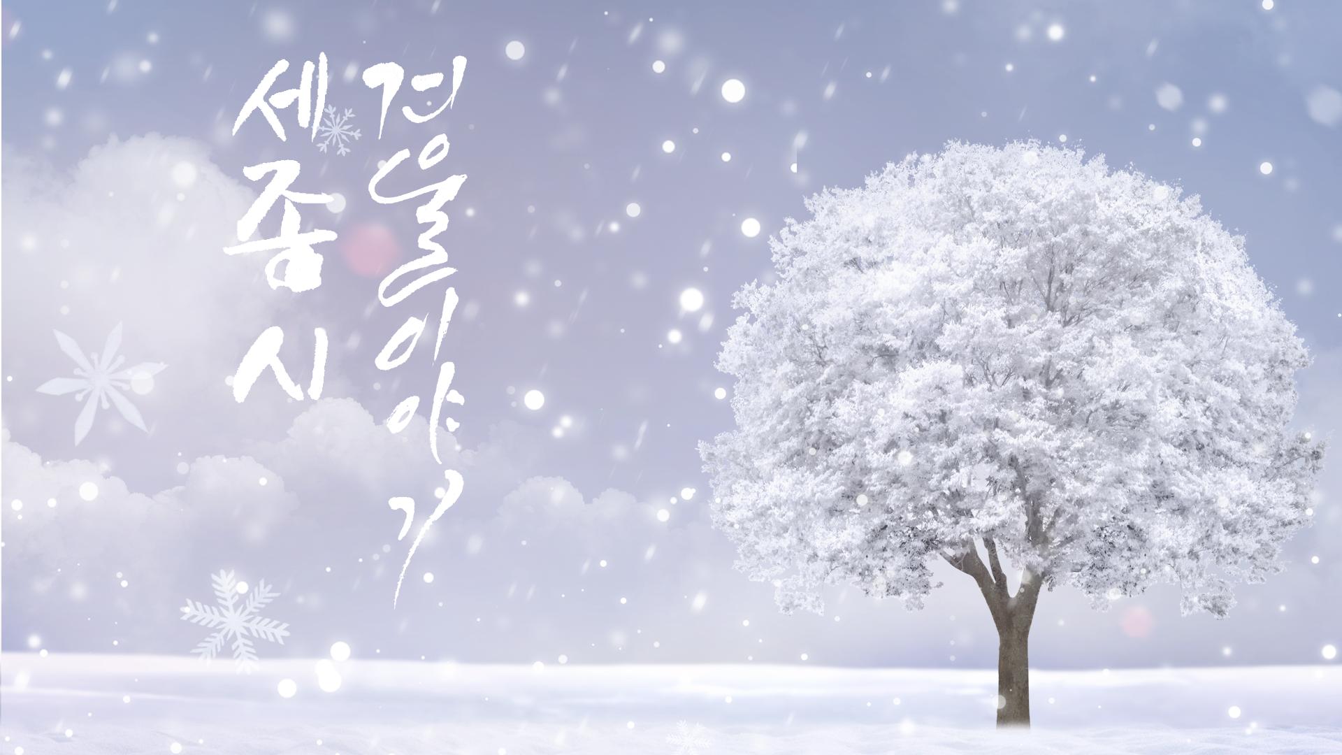 겨울이야기(금강 수목원 설경)