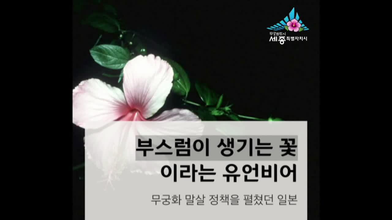 제10화 무궁화 자소서 공개