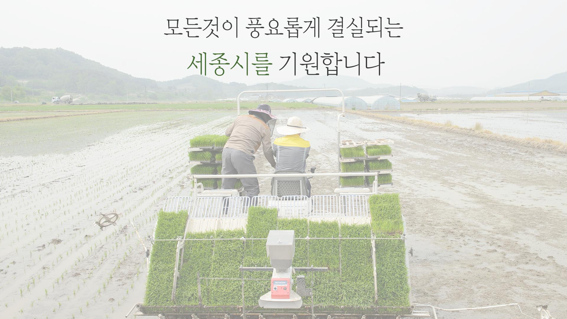 <소통영상> 2017년  첫 모내기