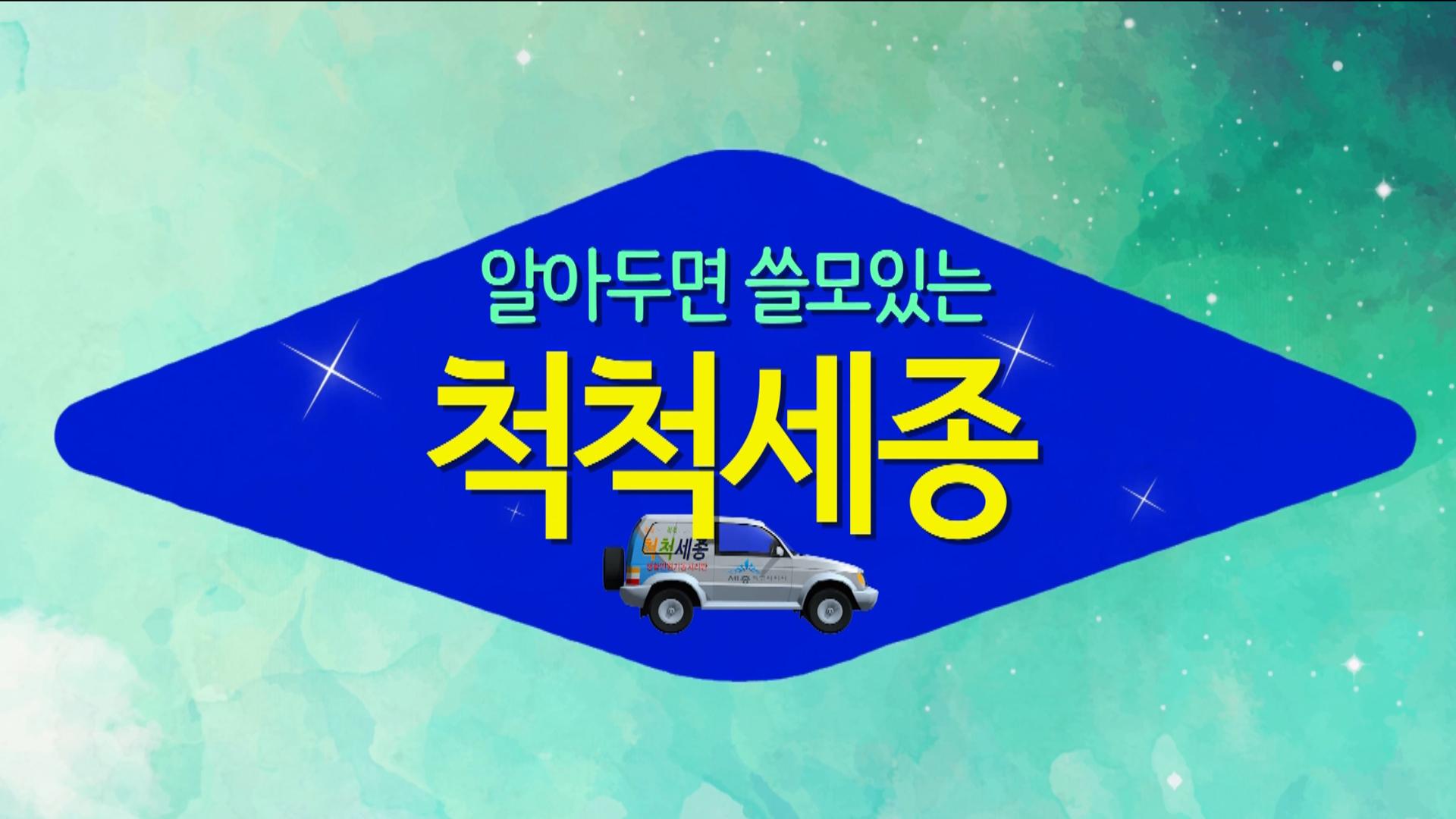<2017년 부서소통영상> 9월 척척세종