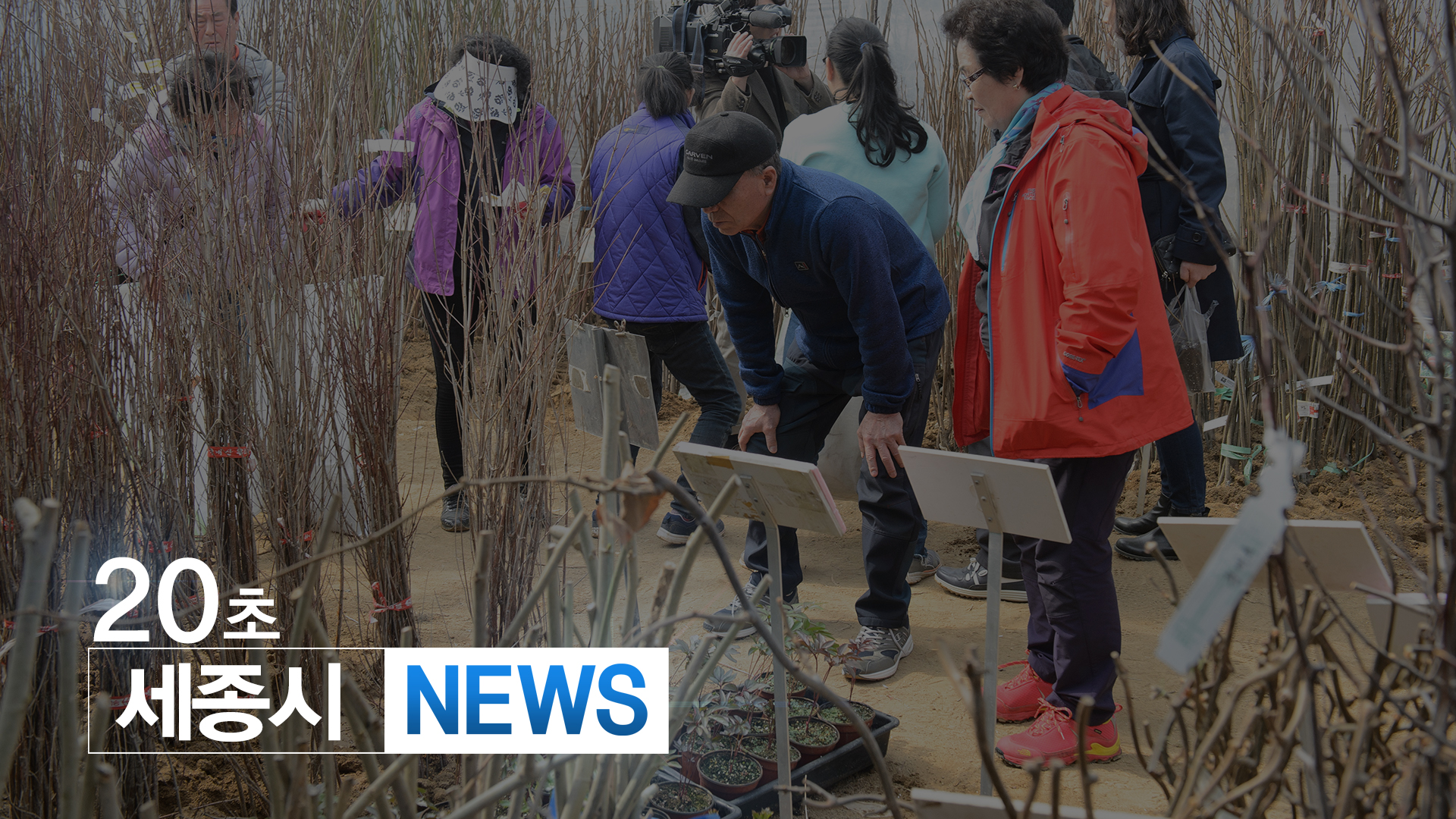 <20초뉴스> 세종 전의조경수묘목축제 23~25일 개최