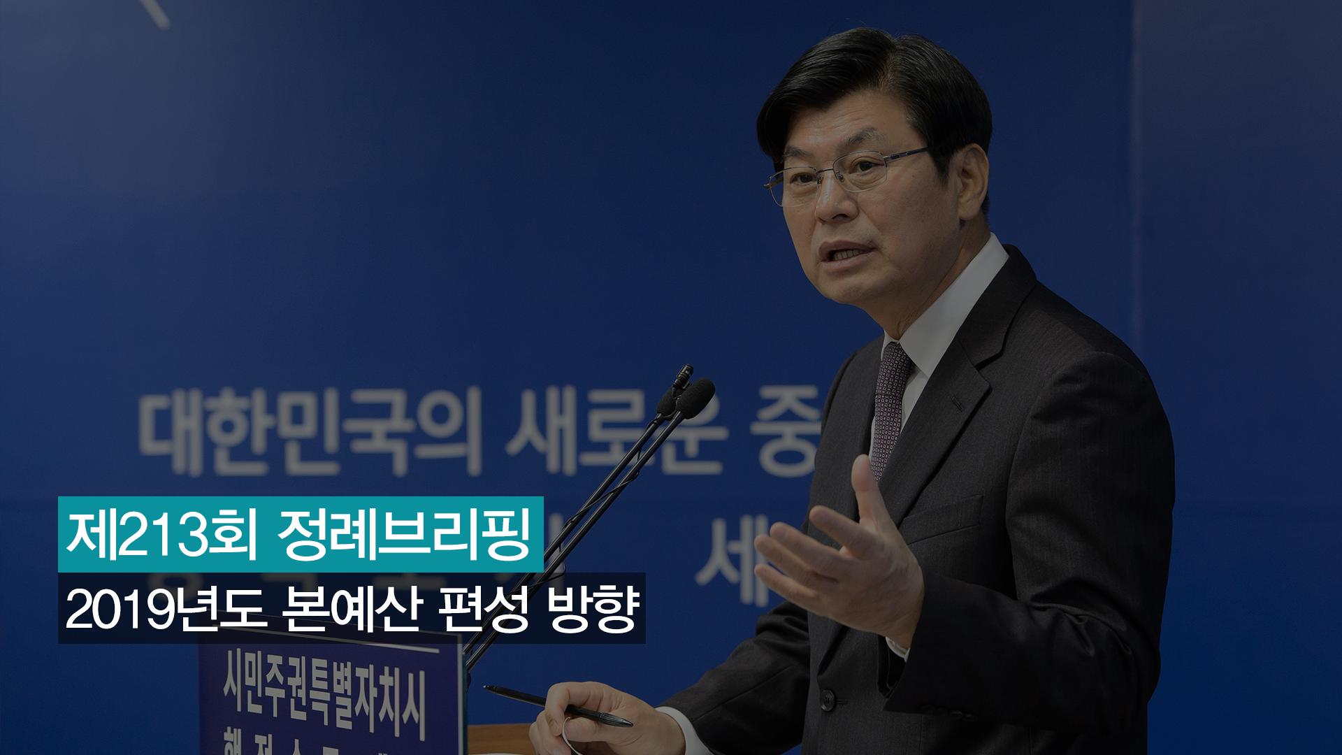 <213번째 정례브리핑> 2019년도 본예산 편성 방향