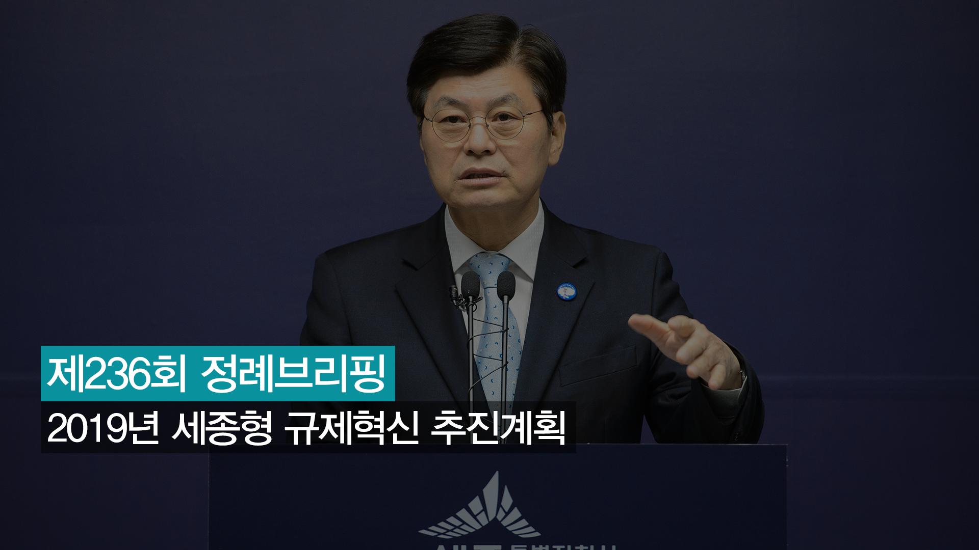 <236번째 정례브리핑> 2019년 세종형 규제혁신 추진계획